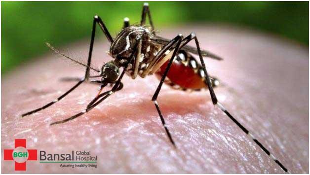 Beware-of-Mosquito