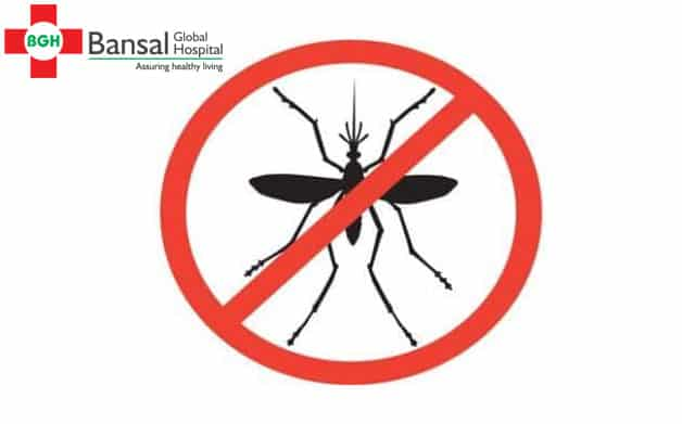 Prepare early for a Dengue Free Delhi - Bansal Global Hospital